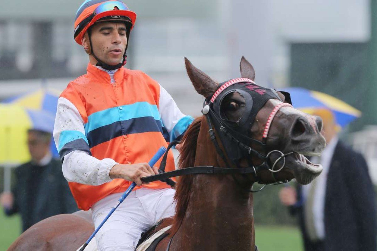 Joao Moreira scored a treble at Sha Tin, but it was Hammer King who was the most impressive of his victors. Photo: Kenneth Chan