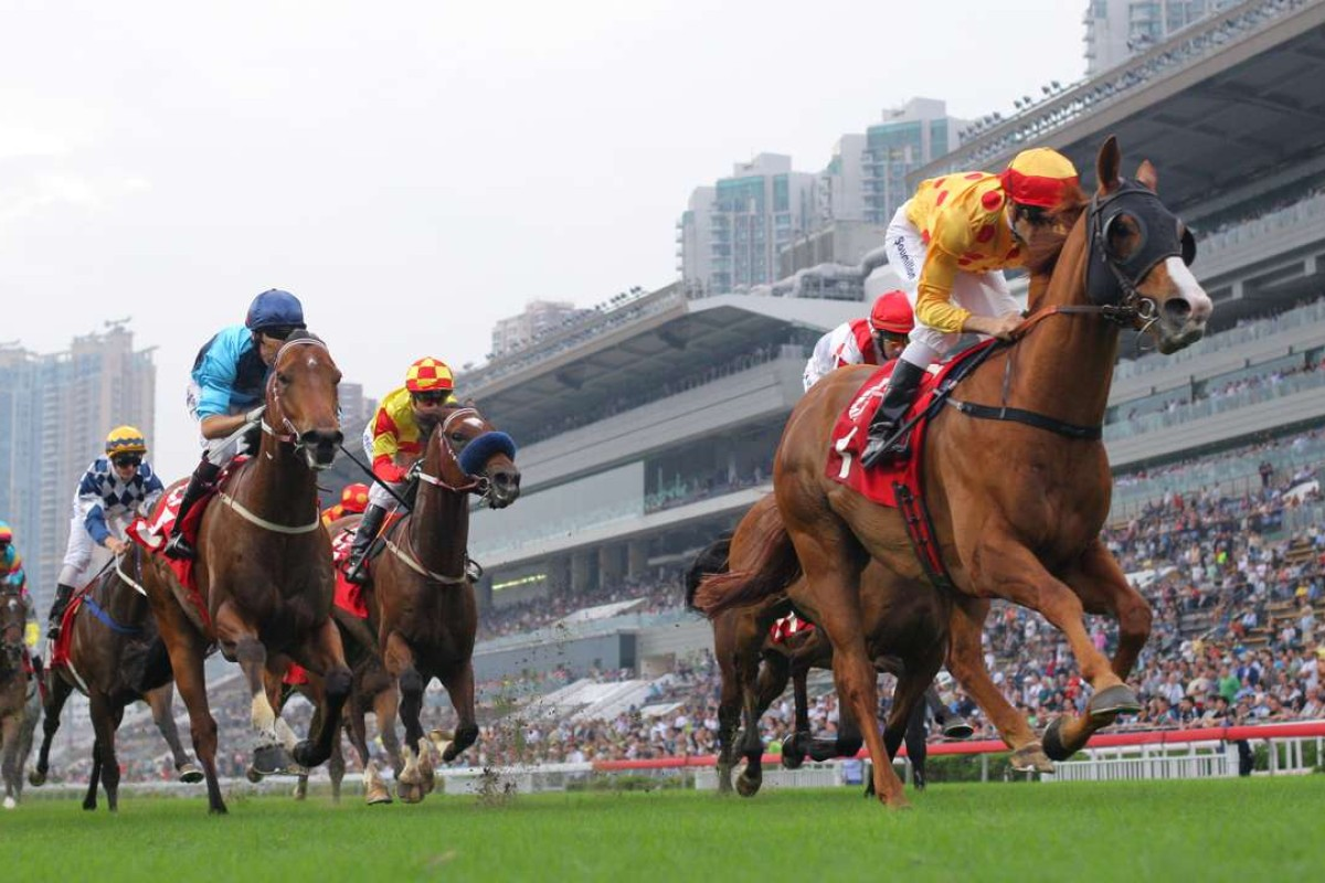 Gold-Fun is being kept fresh so that he can compete in the Group One Chairman's Sprint Prize in May. Photos: Kenneth Chan