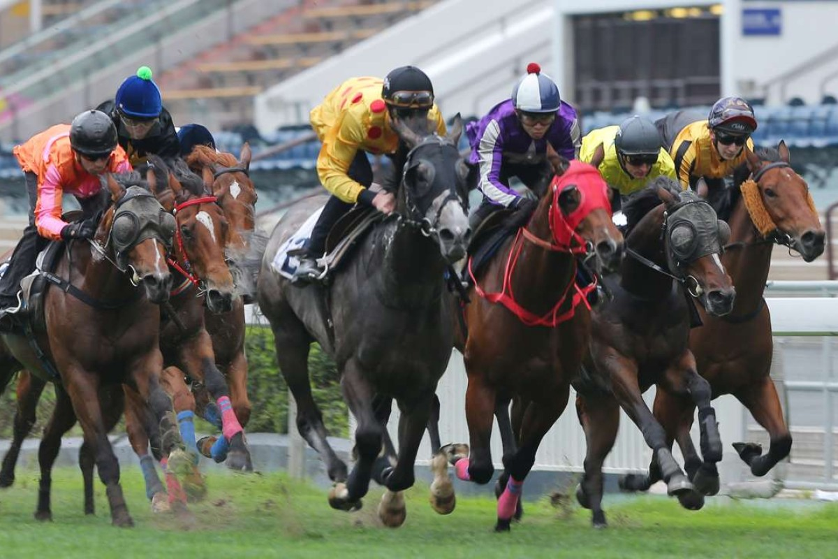 Consort (Chad Schofield) bursts through to win a star-studded trial, finishing ahead of Derby rivals Helene Paragon (Joao Moreira, left) and Werther (Zac Purton, second from right). Photo: Kenneth Chan