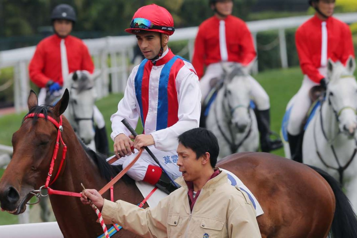 Volitation impressed with his victory at his third time of asking, and looks well placed to make it two in a row on Sunday. Photo: Kenneth Chan