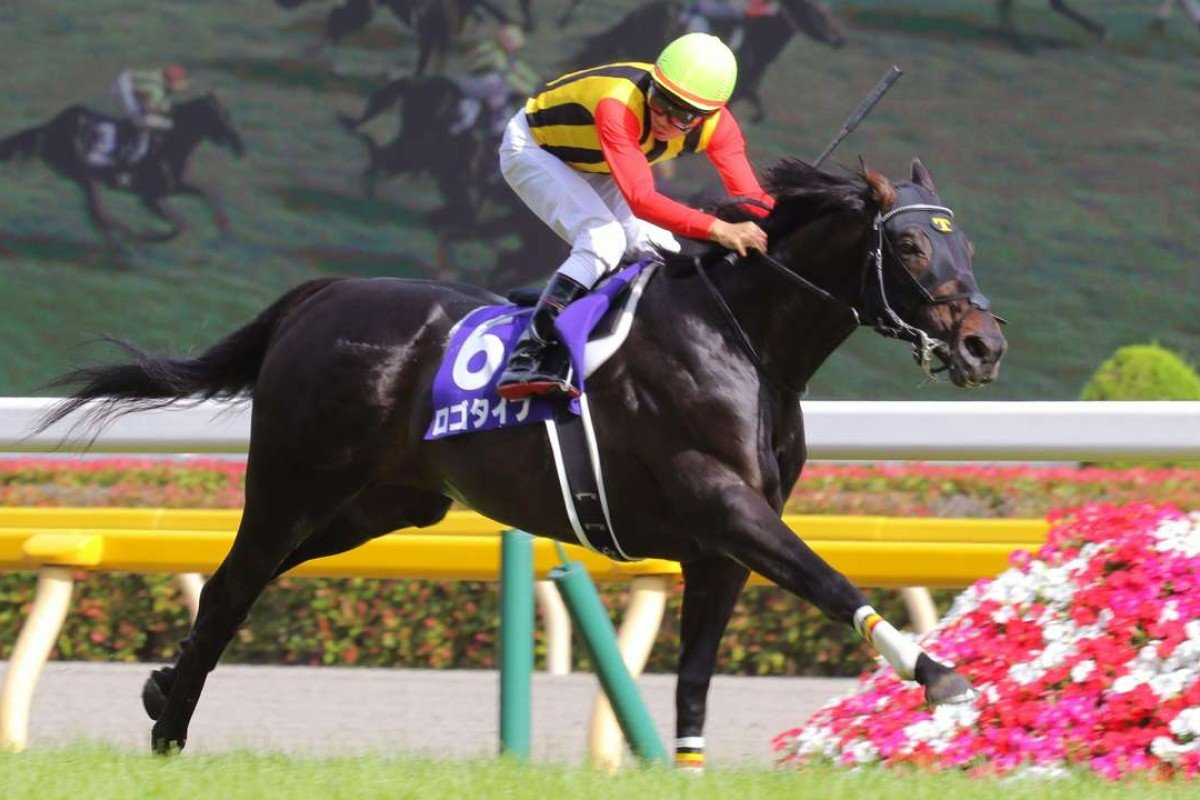 Logotype (Hironobu Tanabe) races away to record an easy win from Maurice and Fiero. Photo: Kenneth Chan