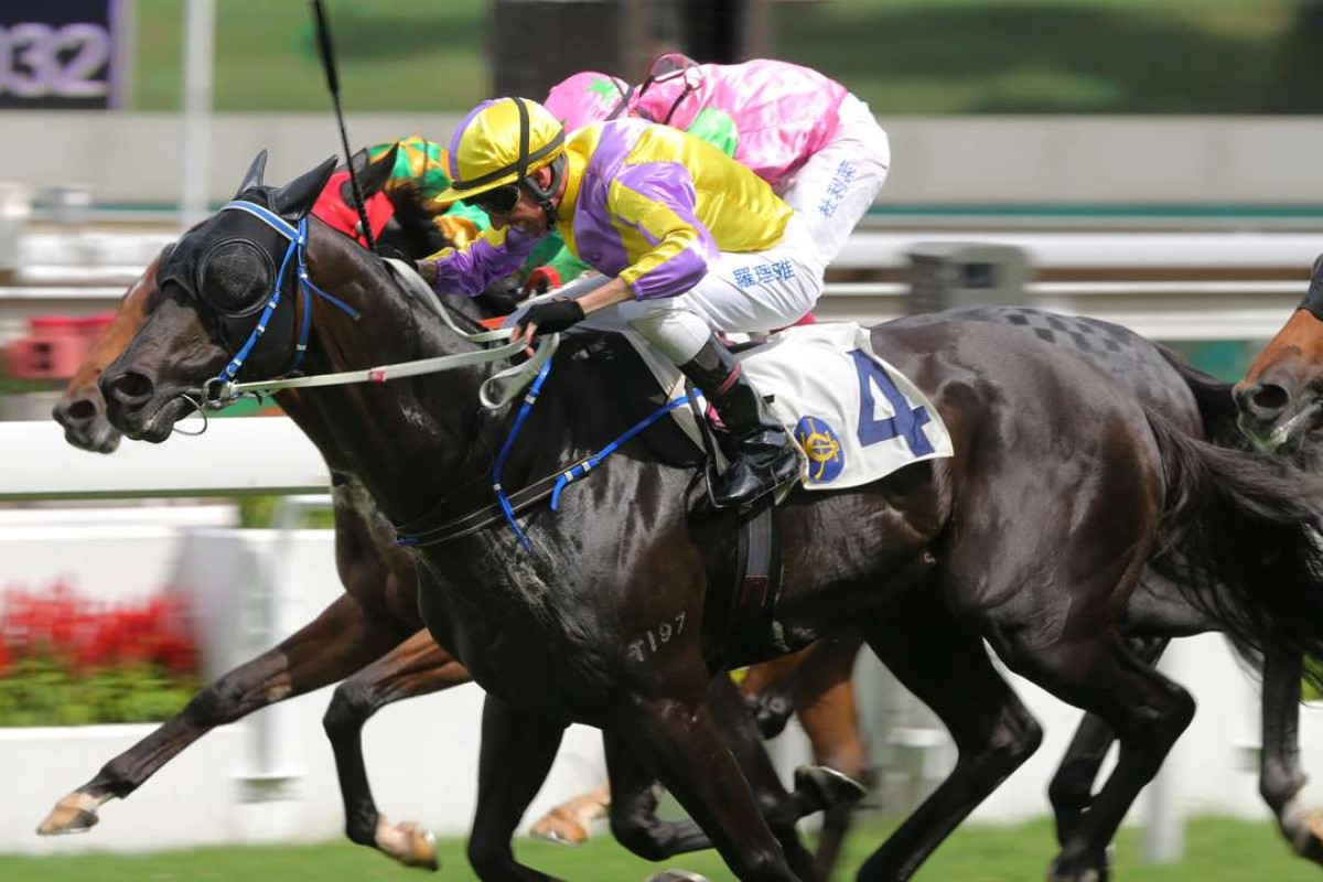 Nash Rawiller gets Renaissance Art over the line to win the feature of the day, the Hong Kong Reunification Cup, at Sha Tin on Friday. Photos: Kenneth Chan
