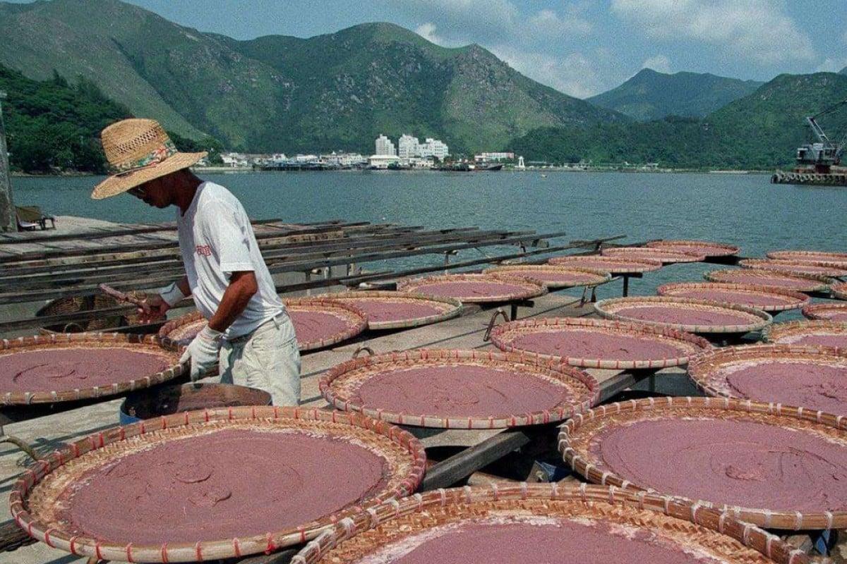 A worker processes shrimp paste in Tai O, Lantau Island. Pictures: SCMP
