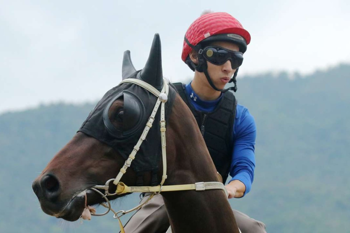Pakistan Star looks around at trackwork with jockey Matthew Chadwick in the saddle. Photos: Kenneth Chan