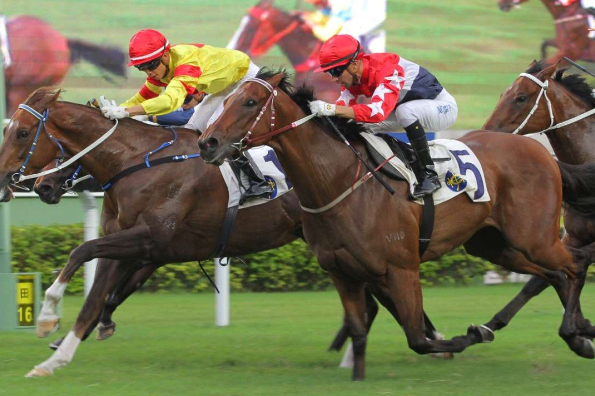 Twin Delight stuns his rivals to win last start. Photos: Kenneth Chan