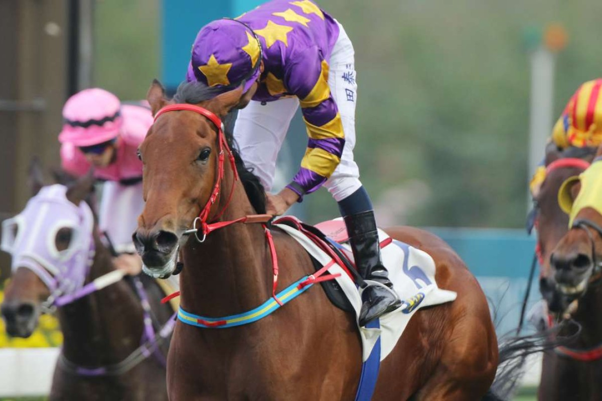 Eastern Express wins at Sha Tin in January. Photos: Kenneth Chan
