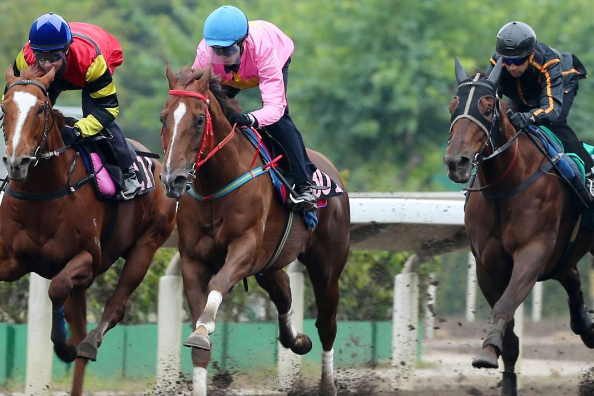 Lucky Bubbles (left), Sun Jewellery (middle) and Able Friend (right) stride out in Friday's barrier trial. Photos: Kenneth Chan