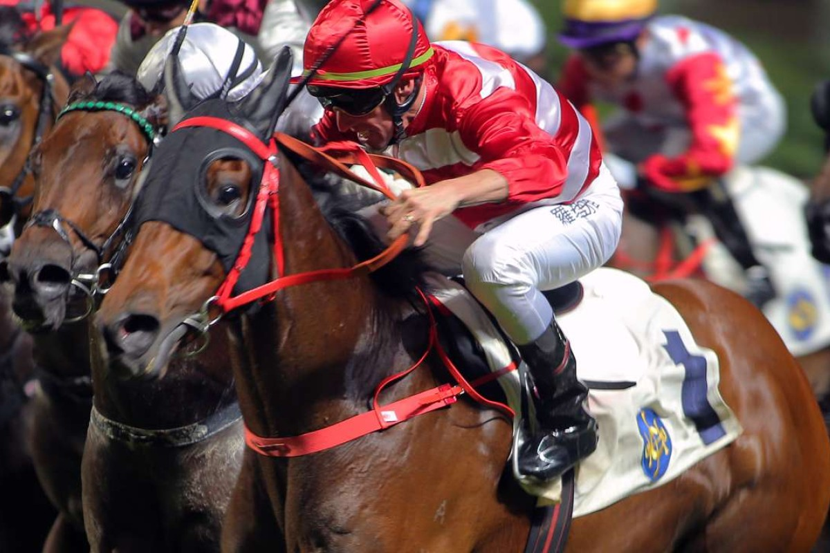 Wayfoong Vinnie wins at Happy Valley last start. Photos: Kenneth Chan