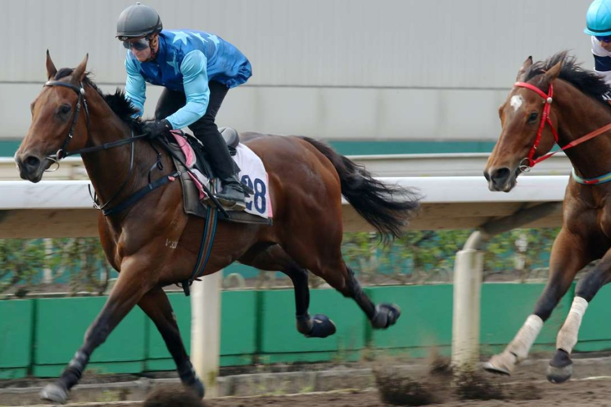 Zac Purton guides Jing Jing Win to victory in Friday's trial at Sha Tin. Photos: Kenneth Chan