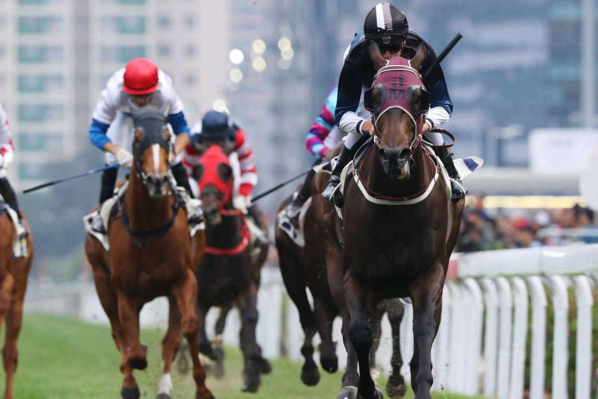 Sam Clipperton steers Bad Boy to victory in last weekend's Lukfook Jewellery Cup (Class 2, 1000m) at Sha Tin. Photos: Kenneth Chan