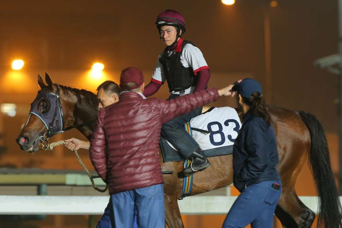 John Moore gives instructions to Werther's trackwork rider on Thursday morning. Photos: Kenneth Chan