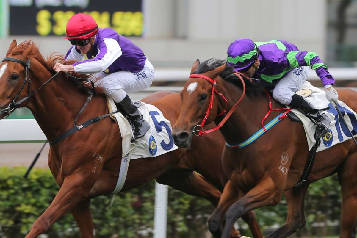 Merrygowin (left) edges out Vital Spring at Sha Tin on Sunday. Photos: Kenneth Chan
