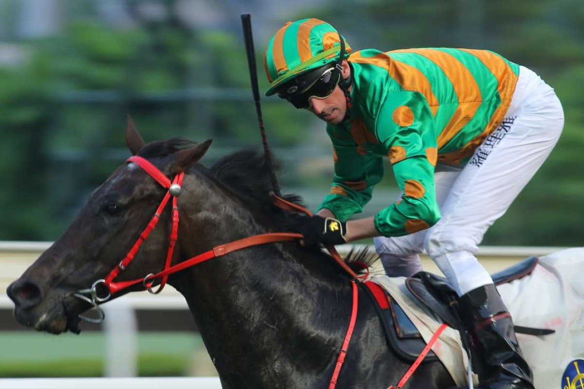 Nash Rawiller guides Circuit Land to victory at Sha Tin in September. Photos: Kenneth Chan