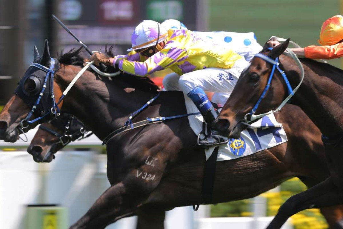 Douglas Whyte pushes out Noble De Love to salute at Sha Tin on Sunday. Photos: Kenneth Chan