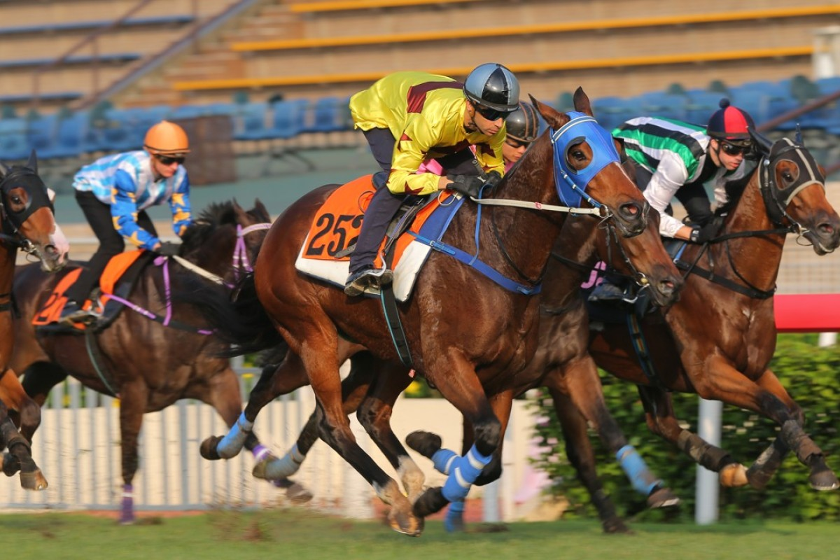 Southern Legend trials nicely for Joao Moreira at Sha Tin on May 9. Photos: Kenneth Chan.