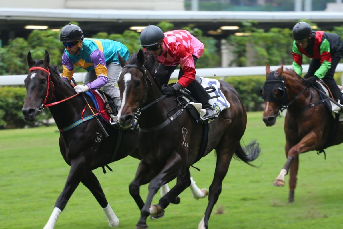 Planet Star (middle) finishes ahead of subsequent winner Zero Hedge in a 1,000m trial at Happy Valley on May 19. Photos: Kenneth Chan.