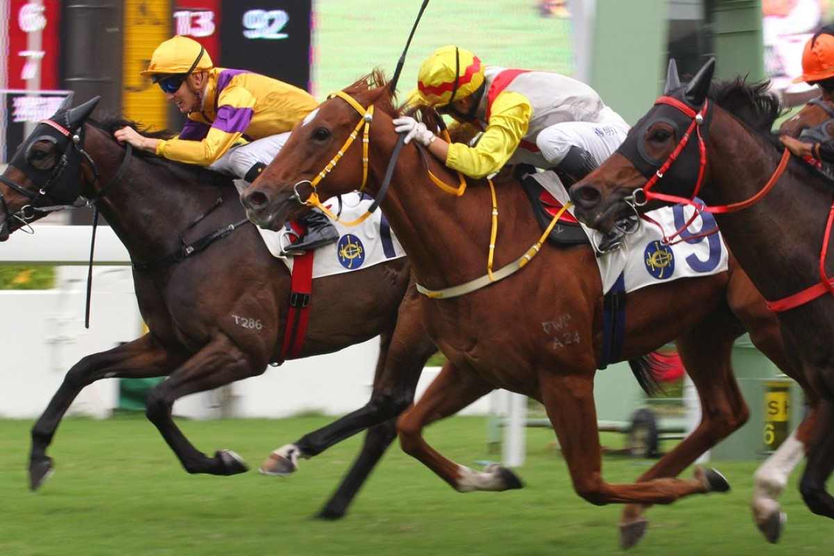 Chad Schofield drives Citron Spirit (left) to victory in Saturday's Hakka Cup. Photos: Kenneth Chan