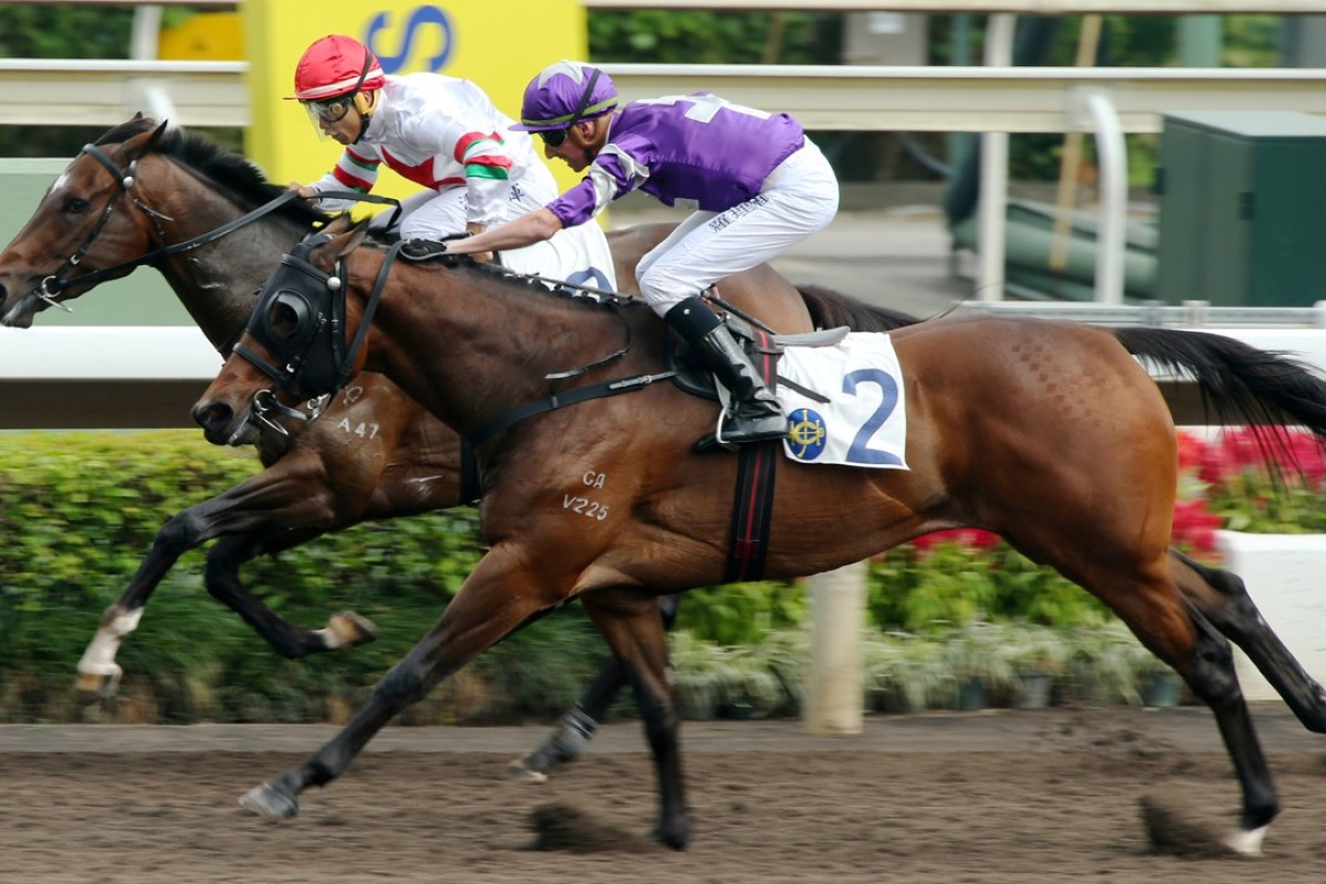 Strathclyde (right) edges out Beekely on the all-weather track on Saturday. Photos: Kenneth Chan
