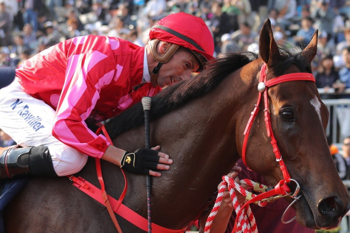 Mr Stunning will have a place in Nash Rawiller's heart after winning the Hong Kong Sprint. Photos: Kenneth Chan