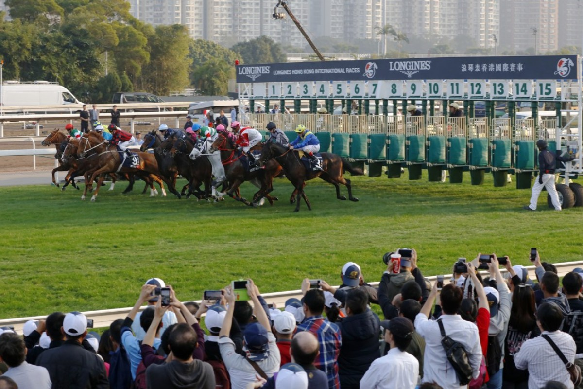 The field jumps in the Longines Hong Kong Cup. Photos: Kenneth Chan