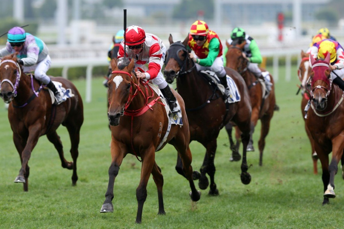Zac Purton (red and white silks) guides Lean Perfection to victory at Sha Tin. Photos: Kenneth Chan
