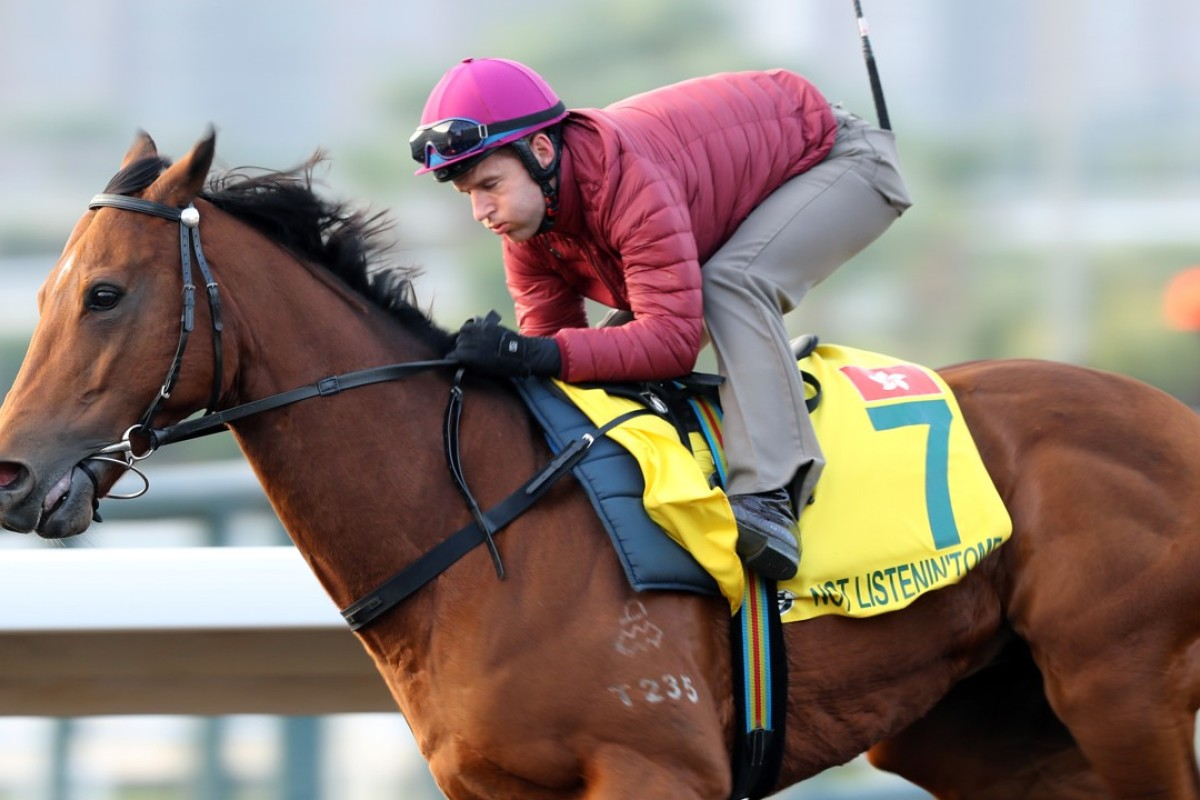 Tommy Berry puts Not Listenin'tome through his final paces for Sunday's feature race. Photos: Kenneth Chan