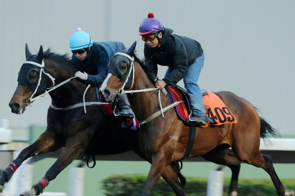 Doctor Geoff (outside) works with Dragon Lips on Thursday at Sha Tin. Photos: Kenneth Chan.