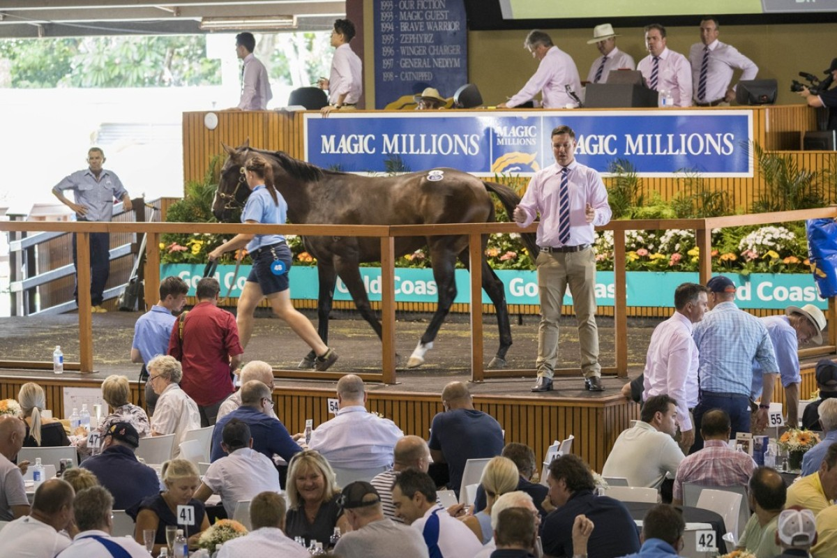 The Jockey Club is not present at the ongoing Magic Millions yearling sale in Australia. Photo: EPA