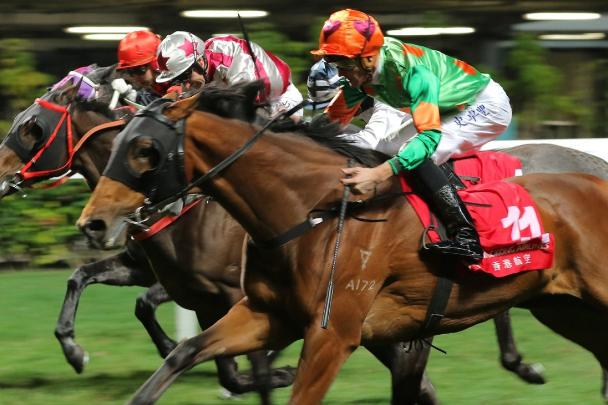 Rule Thee breaks through over 2,200m at Happy Valley last start. Photos: Kenneth Chan.
