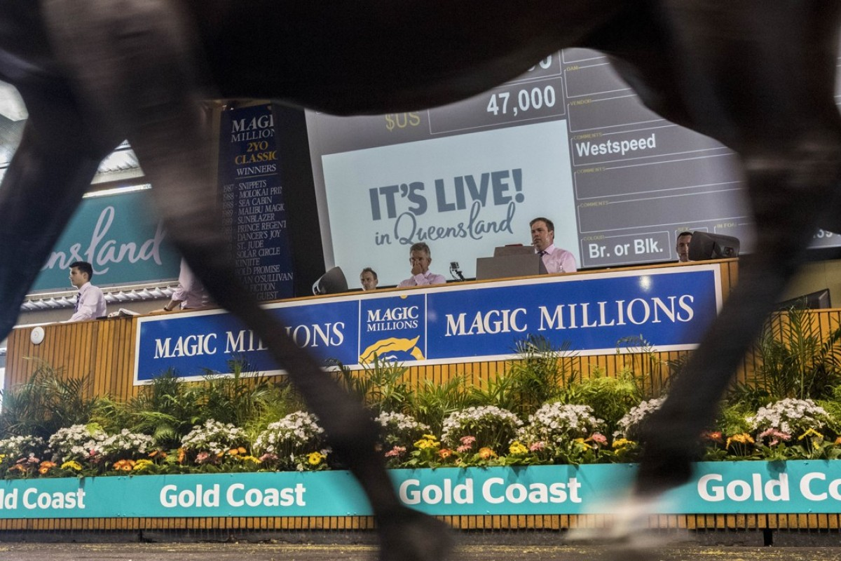 The 2018 Magic Millions sale on the Gold Coast. Photo: EPA-EFE/GLENN HUNT