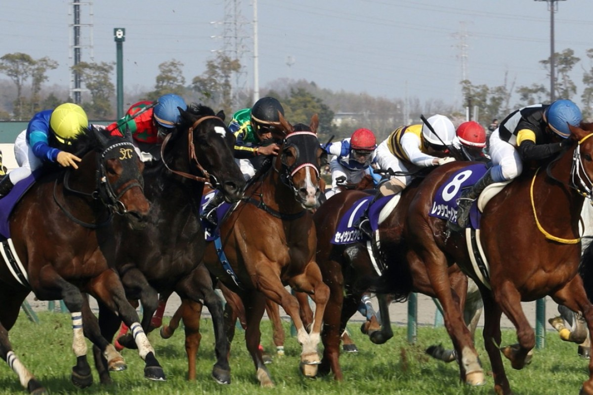 Fine Needle (left) wins the Takamatsunomiya Kinen. Photo: Kenneth Chan
