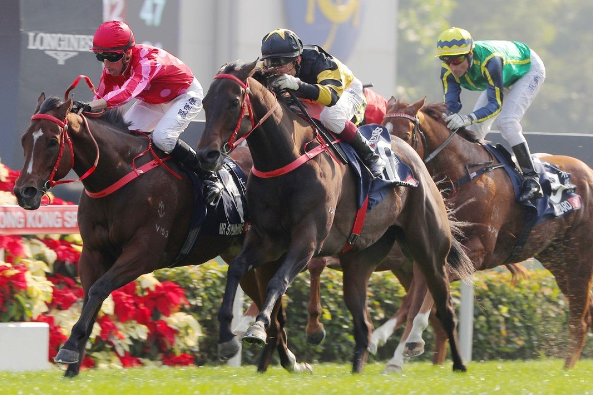 Mr Stunning (left) wins the Group One Hong Kong Sprint. Photos: Kenneth Chan