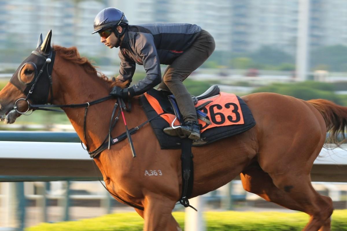 Joao Moreira gallops Amazing Satchmo. Photos: Kenneth Chan