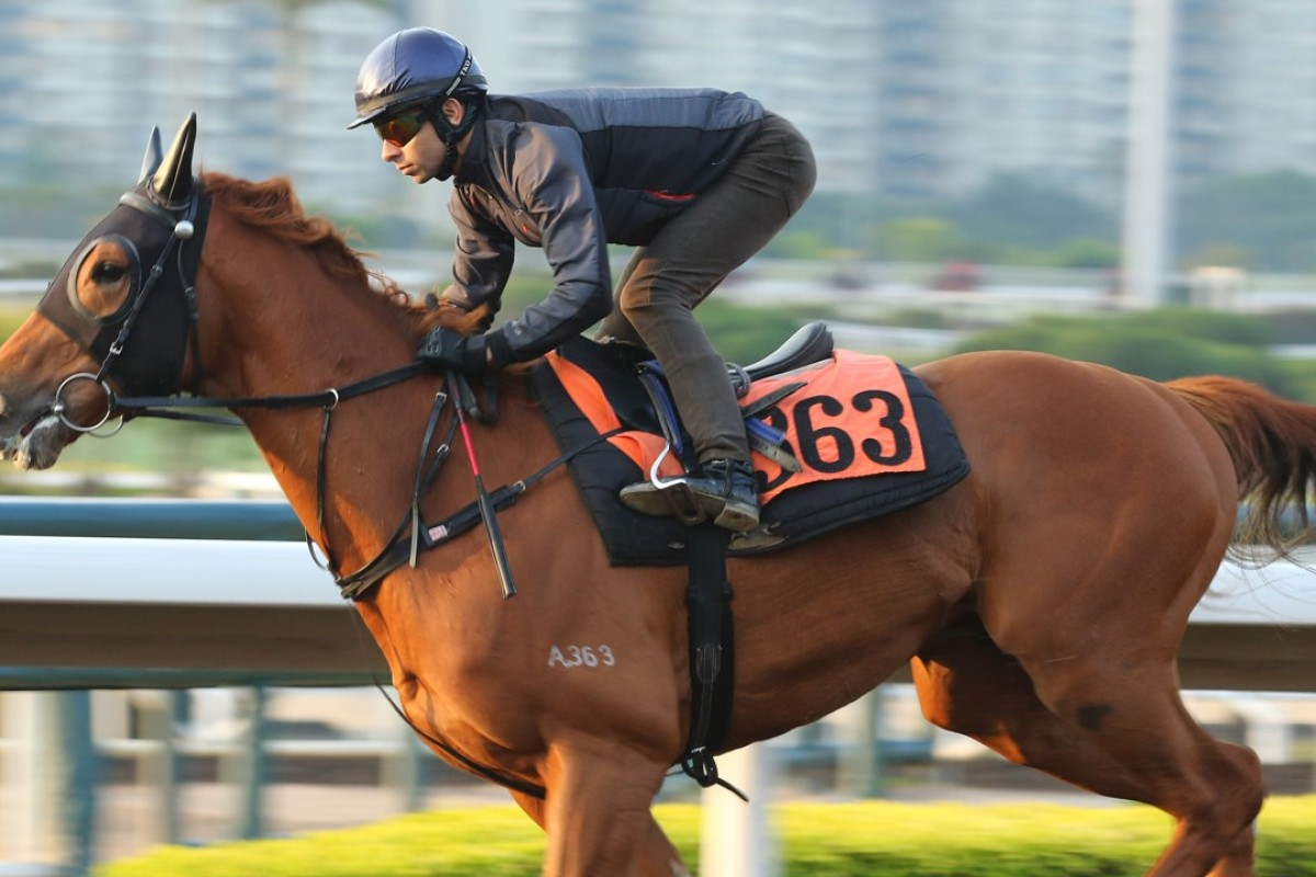 Joao Moreira gallops Amazing Satchmo. Photos: Kenneth Chan