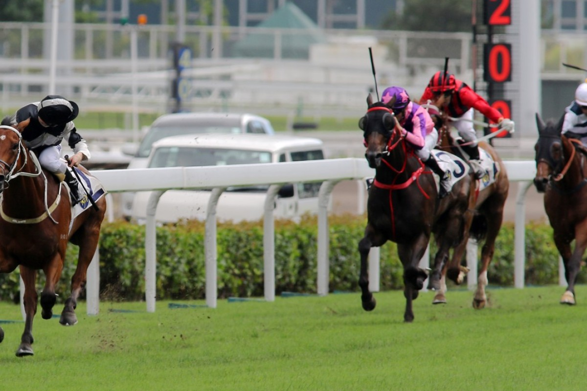 Where did they go? Zac Purton takes a peek over his shoulder as Exultant spanks his rivals to win by six lengths in the Queen Mother Memorial Cup at Sha Tin. Photos: Kenneth Chan