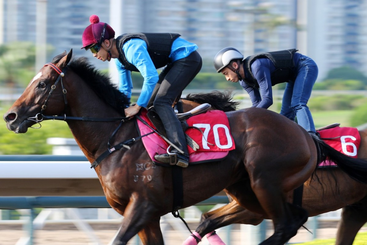 Derek Leung gallops Cordyceps at Sha Tin. Photo: Kenneth Chan