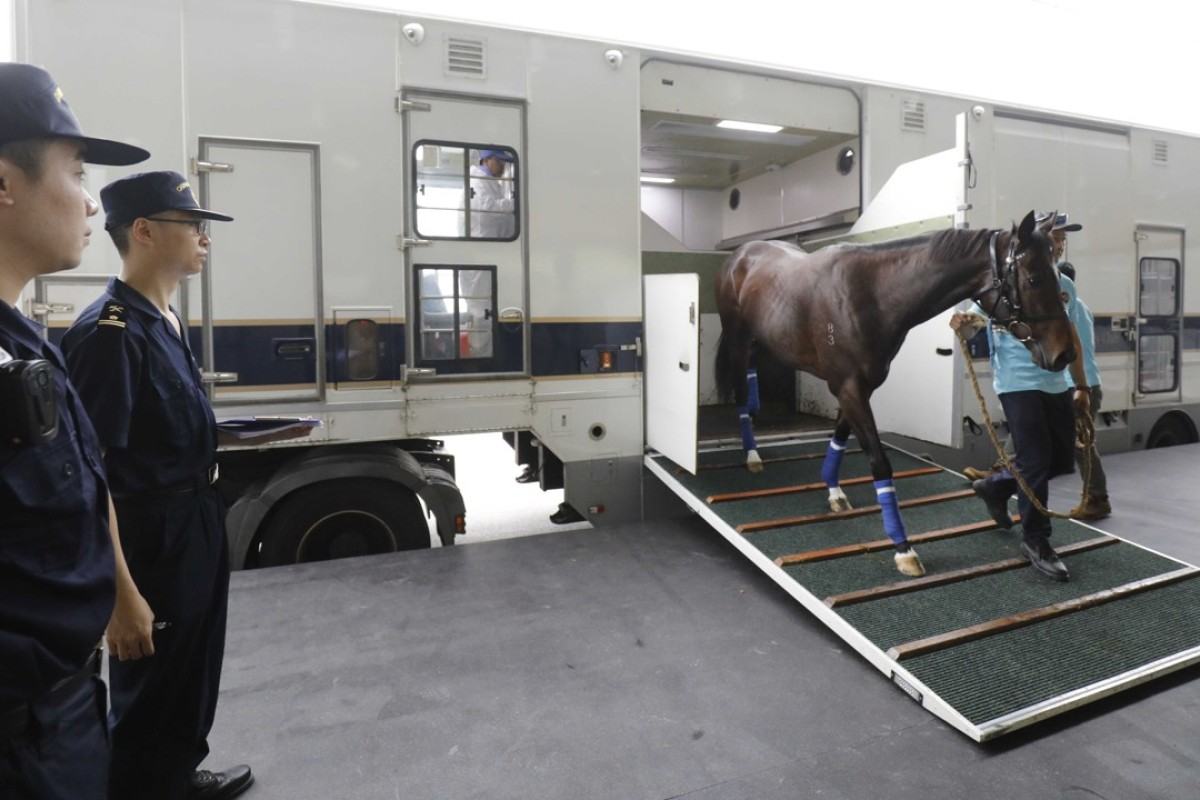 The first horses arrive at Conghua Training Centre on Tuesday. Photos: Hong Kong Jockey Club