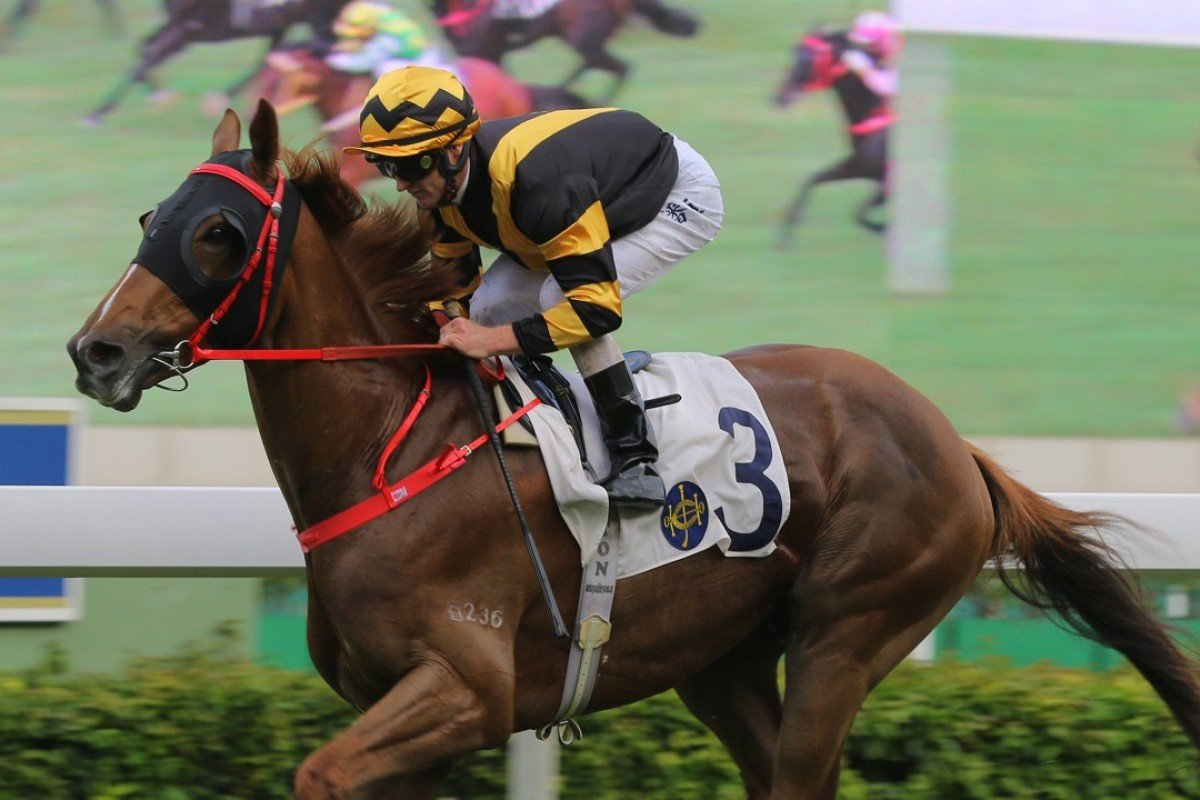 Glorious Forever cruises to a dominant victory at Sha Tin on Saturday. Photo: Kenneth Chan