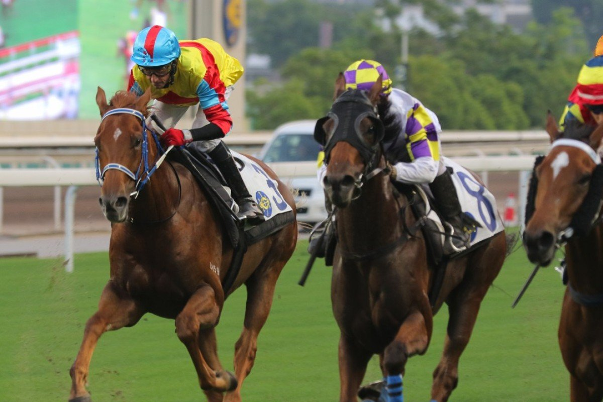 The chances of Hainan holding horse racing any time soon are slim. Photo: Kenneth Chan