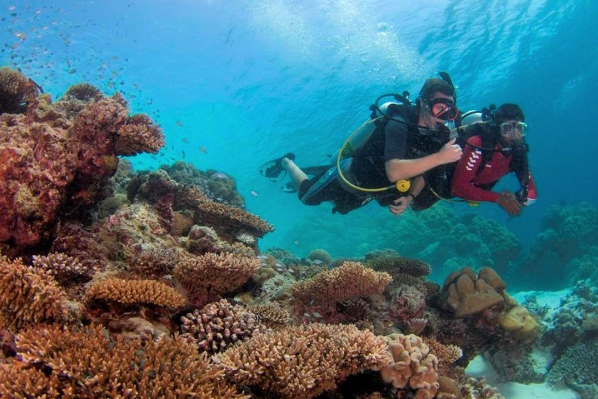 Marine biologists regularly examine the reef condition in Velavaru.