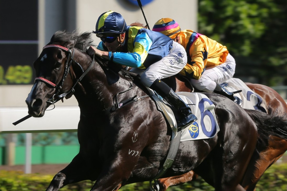 Jolly Banner wins last year's Kwangtung Handicap Cup. Photos: Kenneth Chan
