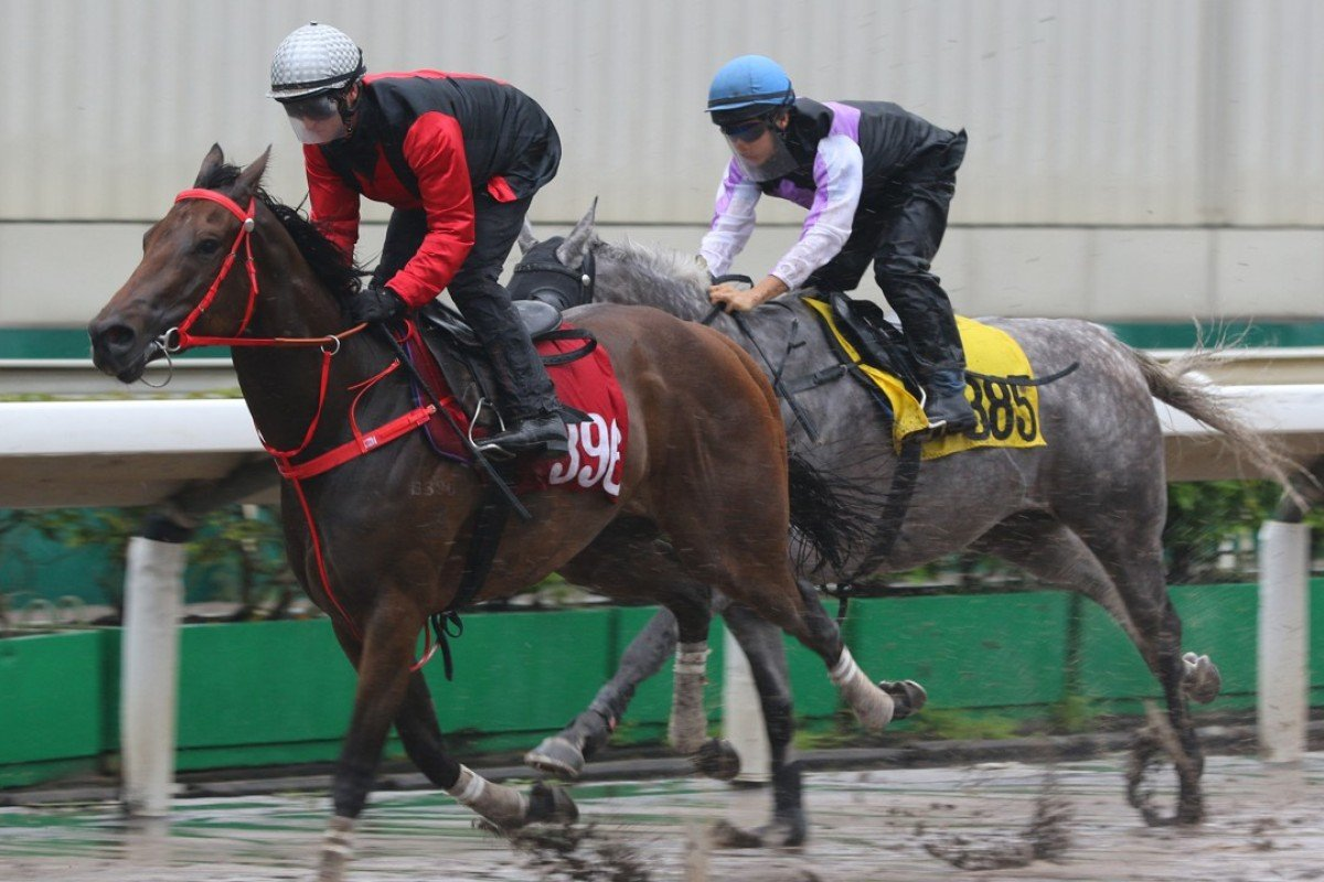 Zac Purton guides Country Star (left) to victory in a recent trial at Sha Tin. Photos: Kenneth Chan