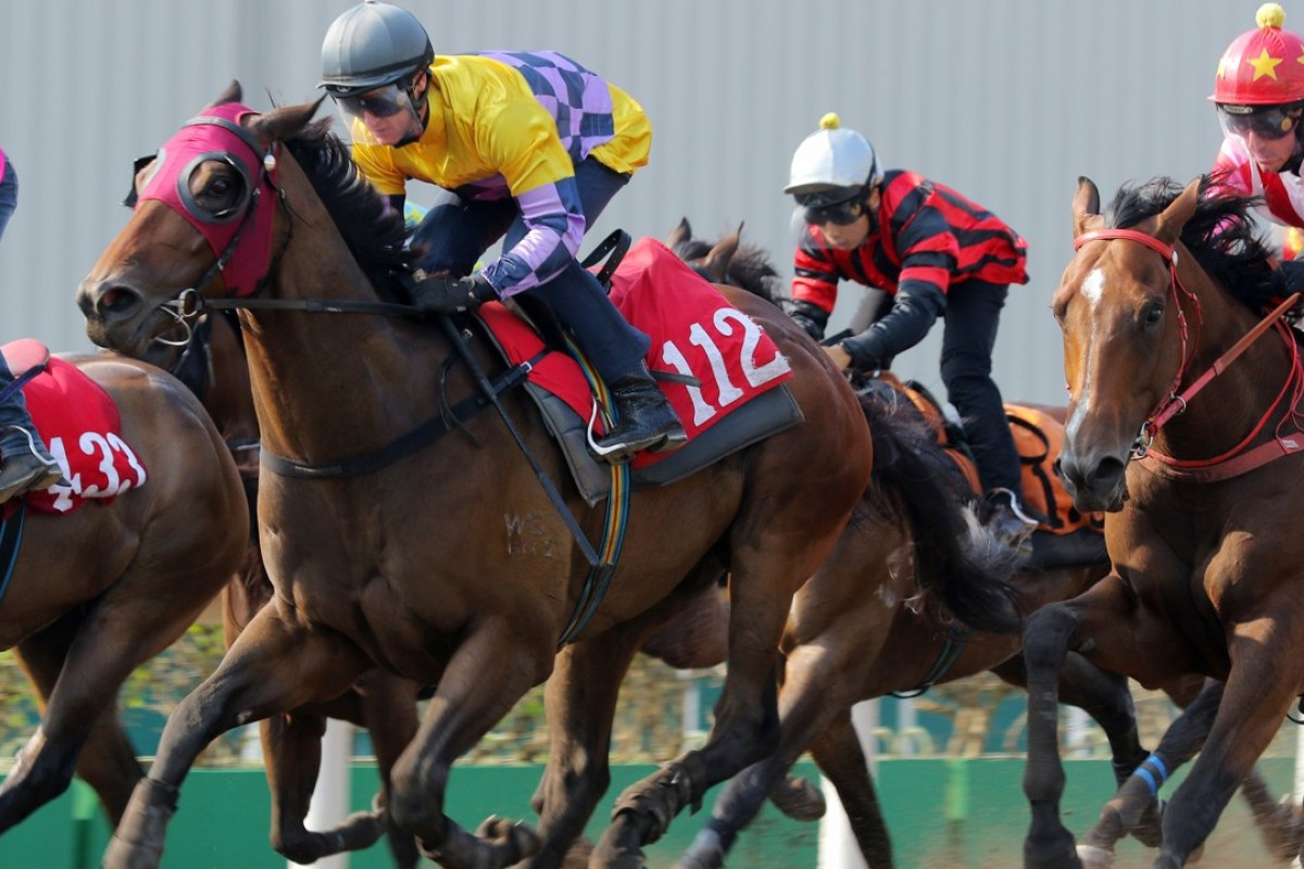 Easy Go Easy Win trials at Sha Tin last week with Zac Purton riding. Photos: Kenneth Chan