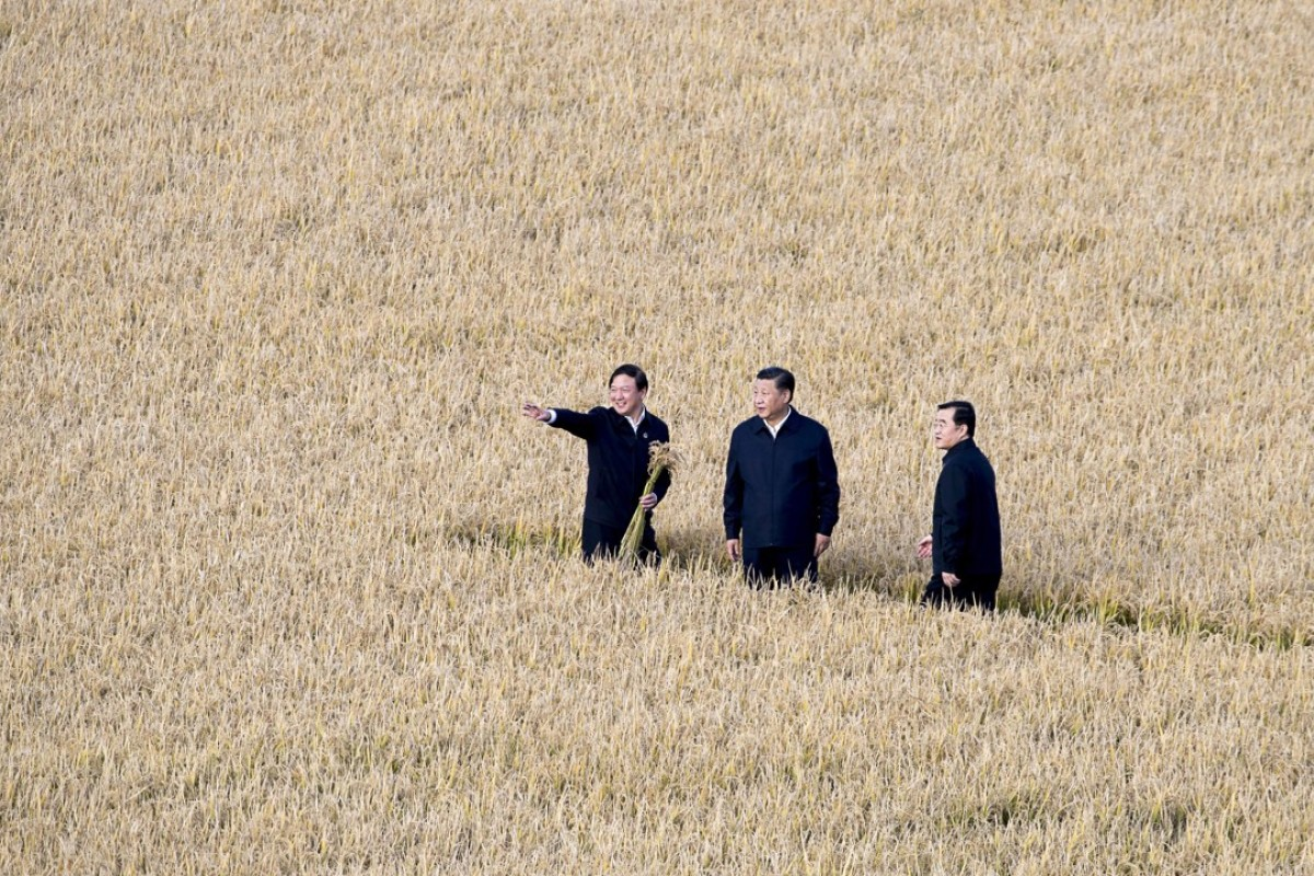 Chinese President Xi Jinping, centre, visits a farm in northeastern China's Heilongjiang province. Photo: AP