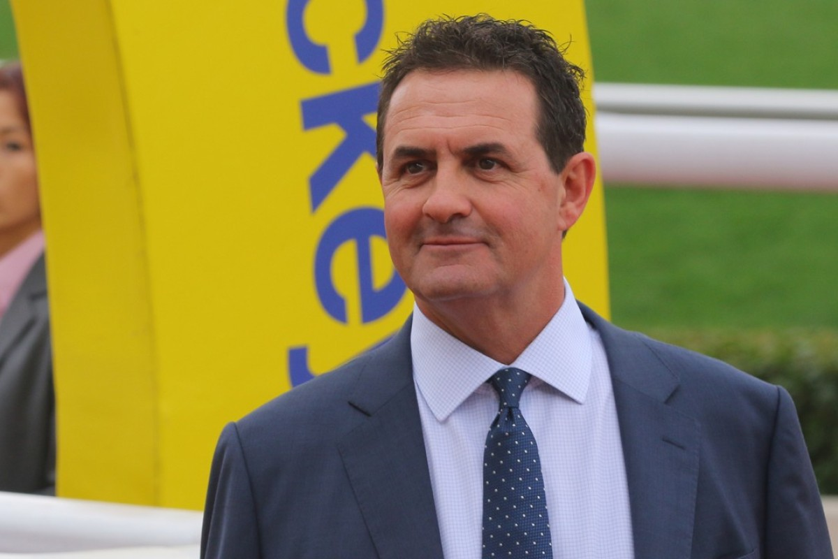 Michael Freedman had only had 14 winners in his opening season and only three so far this season. Photos: Kenneth Chan