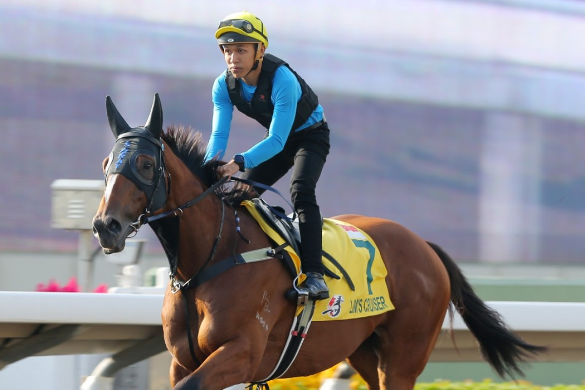 Hong Kong Sprint hopeful Lim's Cruiser has a gallop on the Sha Tin all-weather surface. Photos: Kenneth Chan