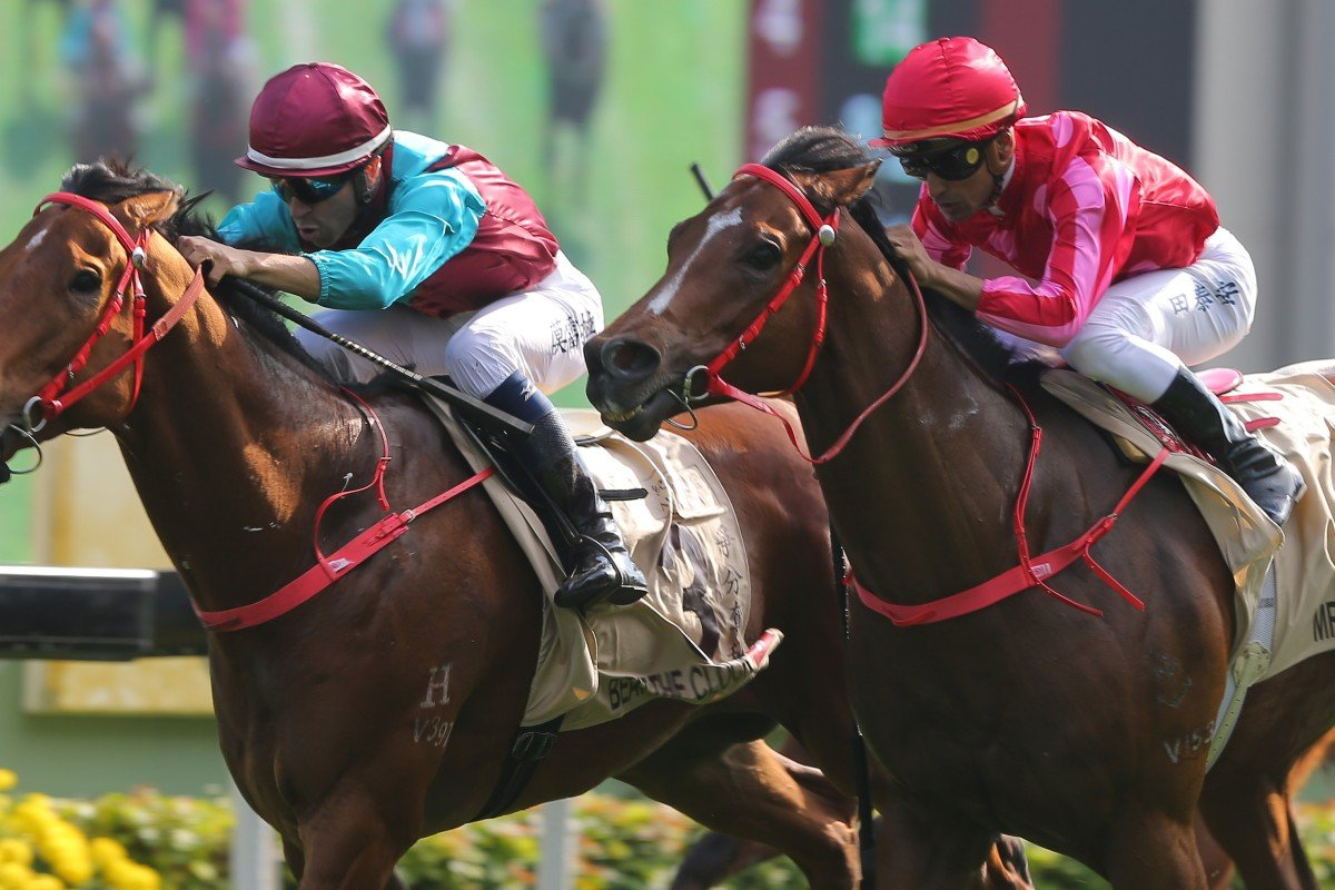 Beat The Clock (inside) holds off Mr Stunning in the Group One Centenary Sprint Cup at Sha Tin on Sunday. Photos: Kenneth Chan