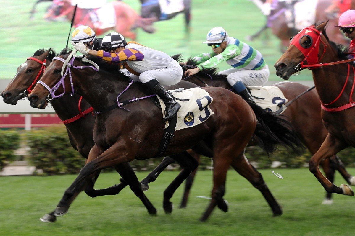 Zac Purton lifts Solar Wai Wai (inside) to victory at Sha Tin on Thursday. Photos: Kenneth Chan