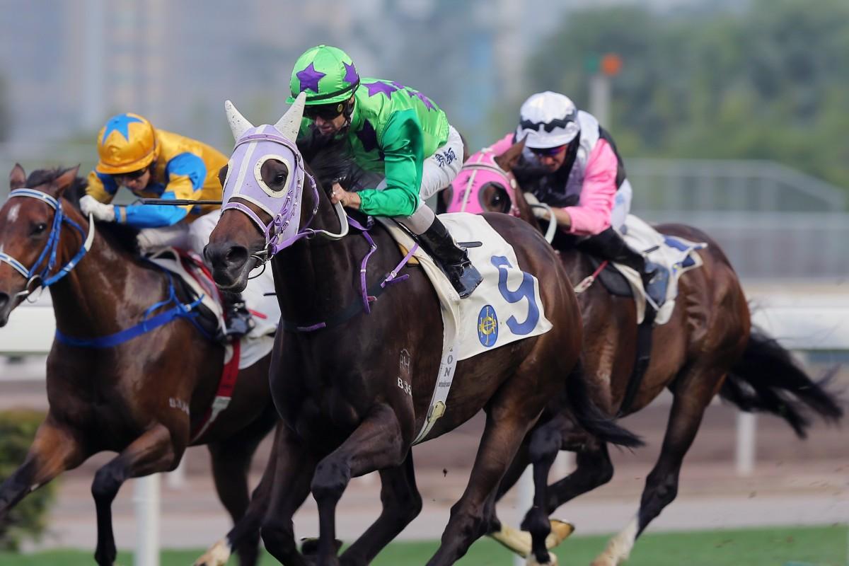 The Jockey Club says Britain's equine influenza outbreak won't impact Hong Kong. Photos: Kenneth Chan