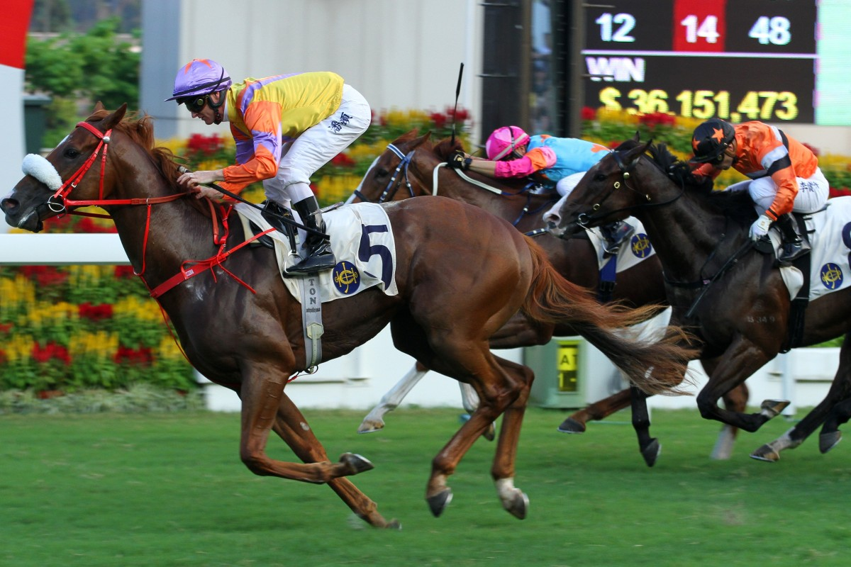 Superich salutes at Sha Tin in October. Photos: Kenneth Chan
